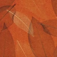 Листья «Прима Рохо»