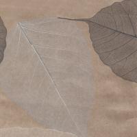 Листья «Прима Байге»