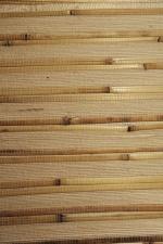 Бамбук-тросник арт.D-3002L