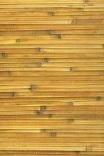 Бамбук-тросник арт.D-3110L
