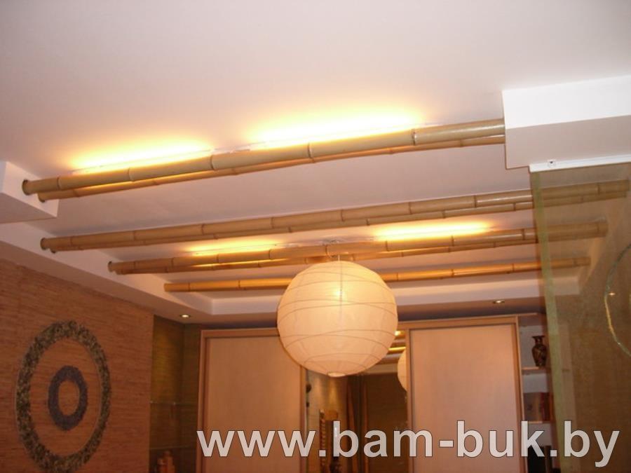 bam-buk.by_stvolu_bambuk_13